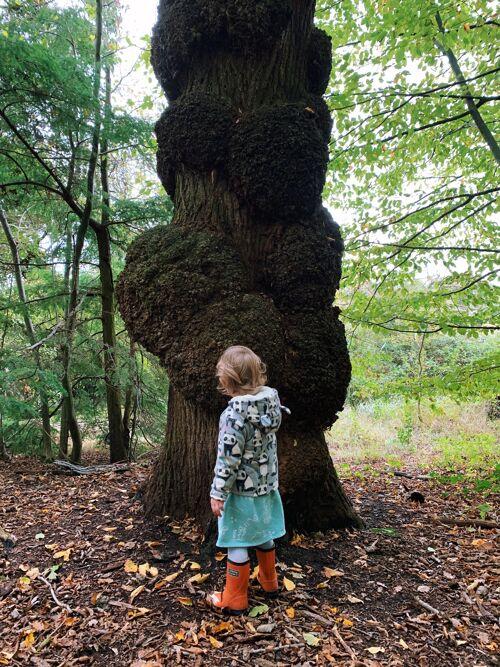 Knobbly tree